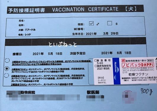 トイ・プードル匿名くんの1回目の予防接種証明書